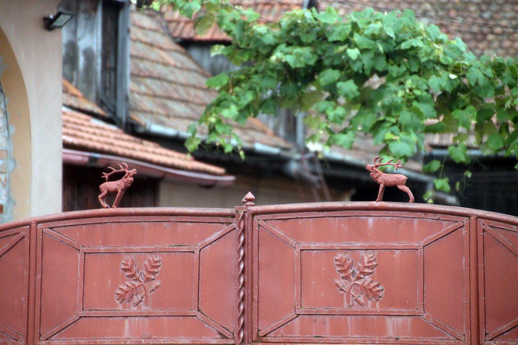 detaliu poarta din venetia
